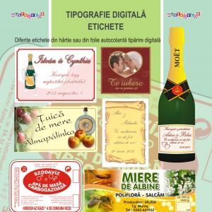 tipografiedigitala7